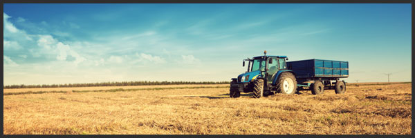 http://www.investmentu.com/wp-content/uploads/2012/02/investing-in-agriculture.jpg