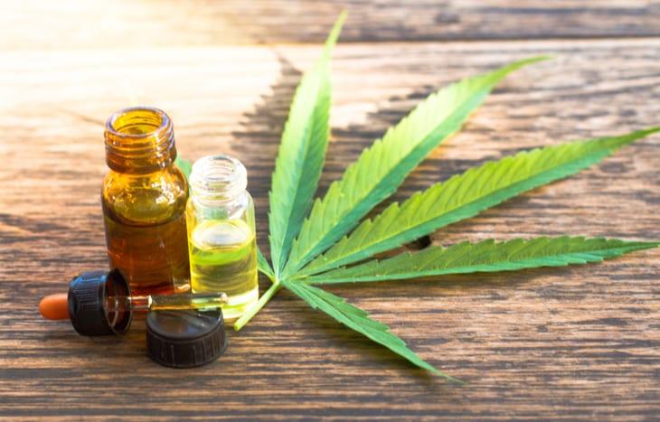 4 Cannabis ETFs to Watch as Federal Legalization Creeps Nearer