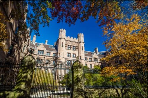 Yale's Billion-Dollar Mistake?