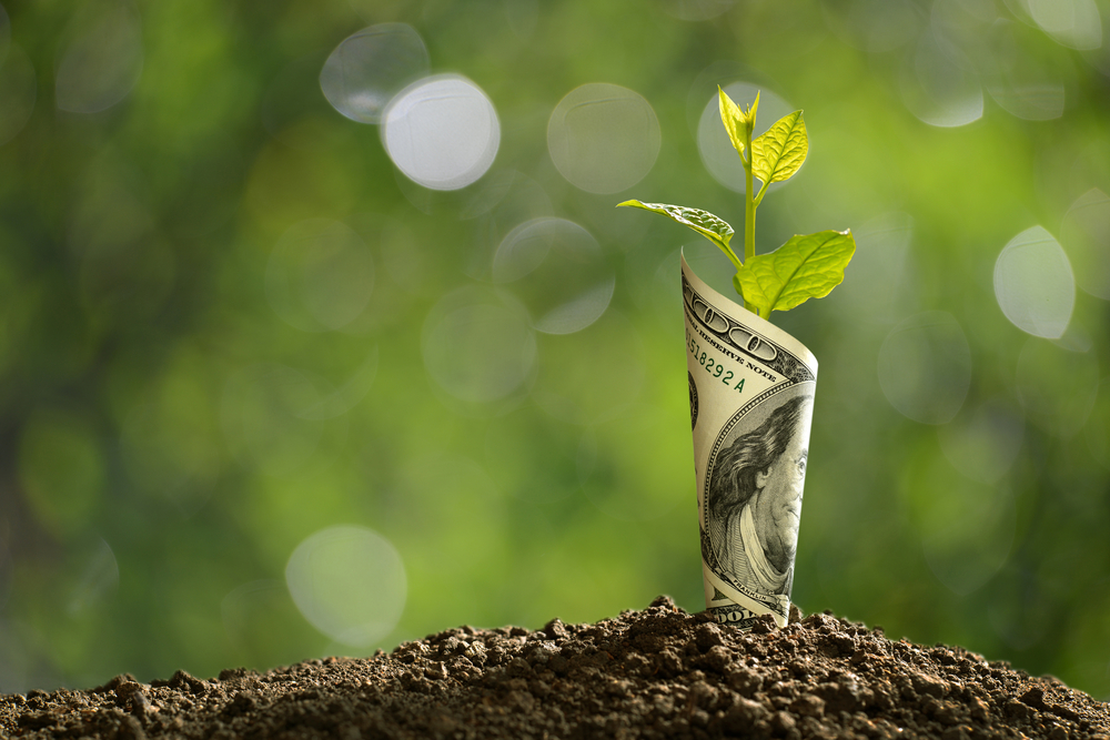 How to Ignite Capital Growth in 2020 (Not Through IPOs)