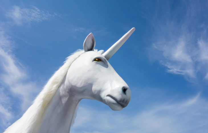 An Investment Unicorn is a Rare Creature