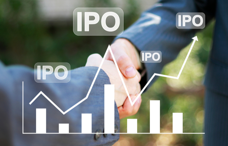 The IPO Process: A Step-by-Step Guide to Going Public