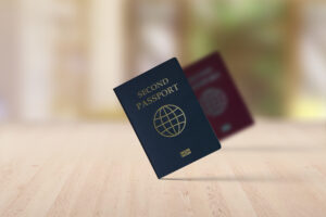 Time to Get a Second Passport… If You Can Afford It