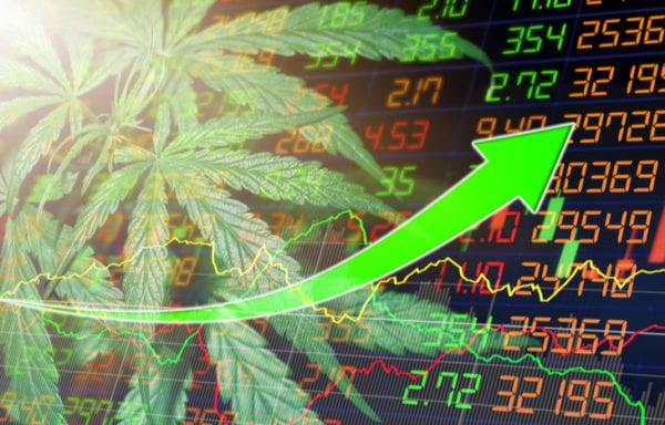 How to Invest in Marijuana Stocks
