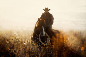 The Key to Conquering the Wild West of Options