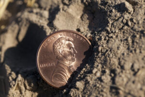 Buried Treasure Doesn't Stand a Chance Against the Fed