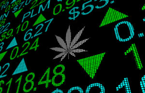 The Top Marijuana Stocks to Watch and Invest in for 2021