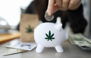 Feeding the piggy bank with the money from cannabis etfs