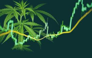 Top 17 Marijuana Penny Stocks List 2021