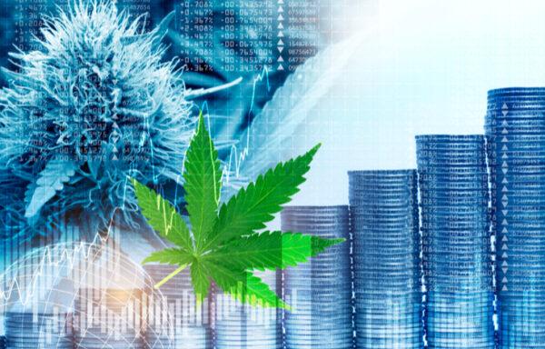 Five Cheap Marijuana Stocks Actually Worth Investing In