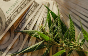 6 Marijuana Penny Stocks to Watch in 2021