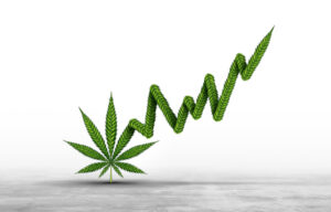 The Best Weed Stocks With Lots of Growth Potential