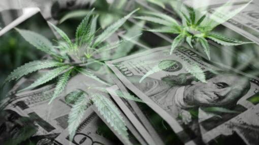 420 Stocks to Profit with Marijuana Legalization
