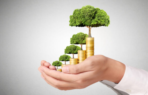 Seed Funding: An Overview for Investors and Startups