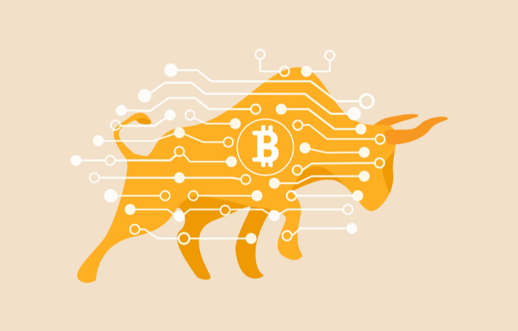 A Bitcoin bull showing positive signs as to when will crypto rebound