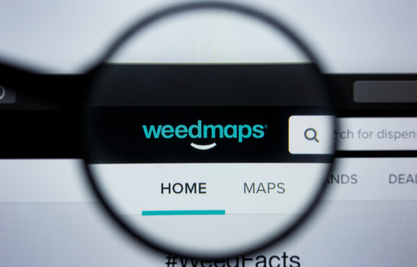 Weedmaps Stock: Everything to Know About This Cannabis SPAC IPO