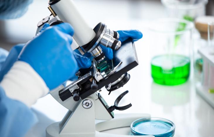 Xenetic Biosciences stock