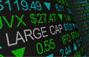 What are Large Cap Companies?