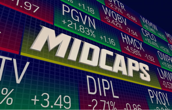 What is a Mid Cap Company?