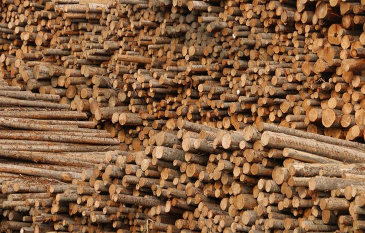 West Fraser Timber Stock